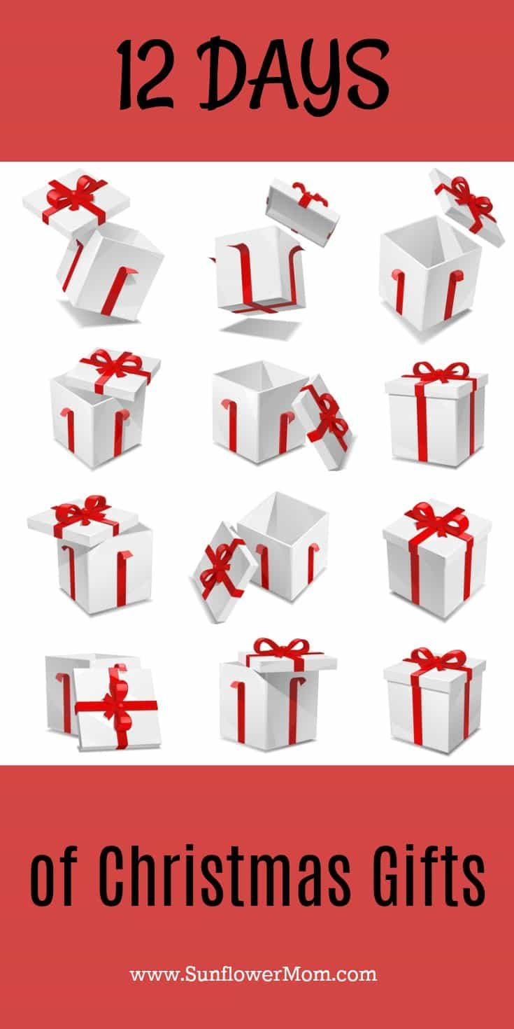 12 Days of Christmas gift ideas: who to give to, what to give, how to give. Hint: it's much more fun to give anonymously!