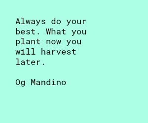 Always Do Your Best Quotes Sunflower Mom