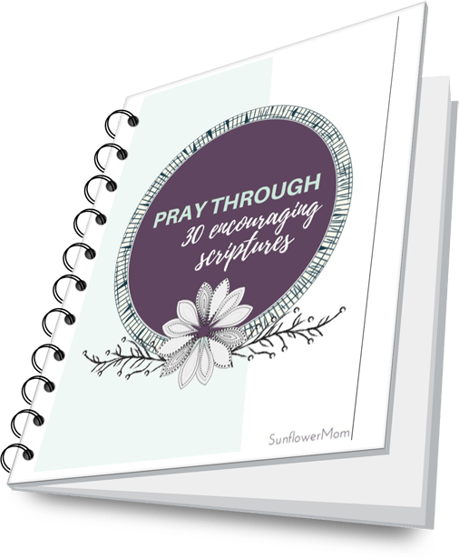 30 scripture prayerbook