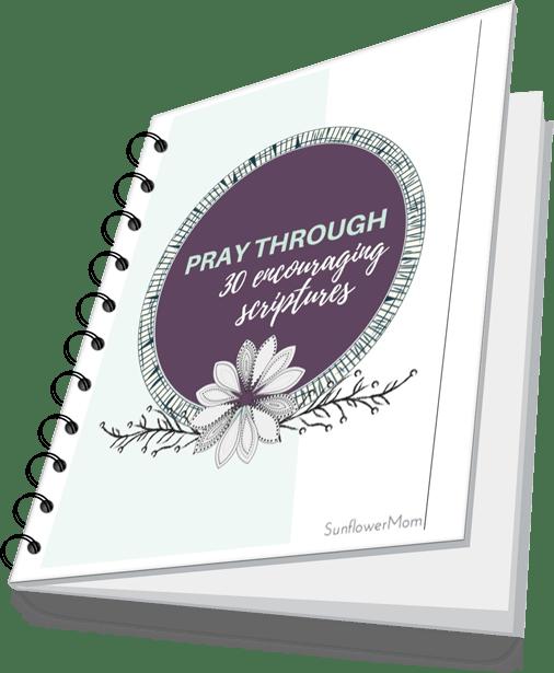 30 scripture prayerbook