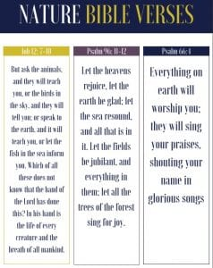 The Best Nature Bible Verses with Free Bookmarks | Sunflower Mom