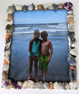 seashell frame